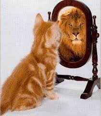 confidence lion